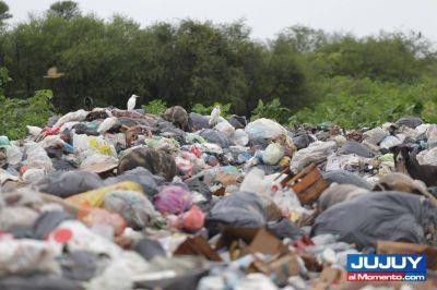 Ambiente: basurales fuera de control
