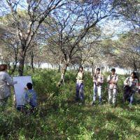 Revalorizan la labor de los ingenieros forestales que hoy celebran su día