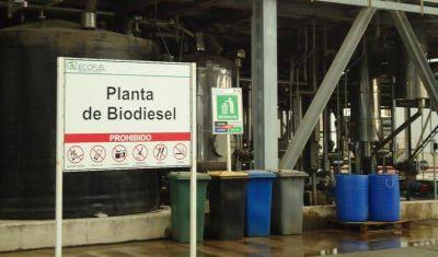 El tipo de cambio inestable provoca gran incertidumbre en el mercado de los biocombustibles