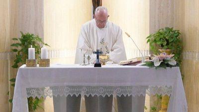 El Papa: ante los perros salvajes que buscan escándalos, callar y rezar