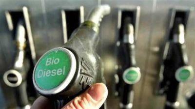 Descartan que el Biodiesel sea el causante de la variación del precio del gasoil en el surtidor
