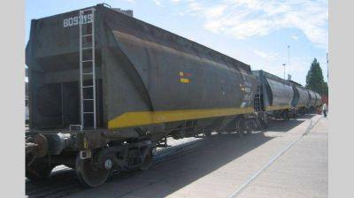 El tren para Vaca Muerta pide visión de estadistas