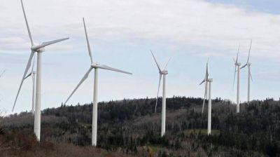 La energía verde brota en el país y la región