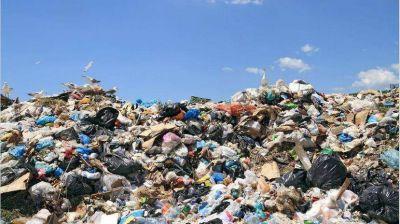 Medio ambiente, bolsas y reciclaje: prohibir, ¿funciona?