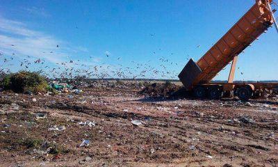 Obras en el predio de basura: informe negativo del contador municipal