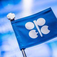 Trump le exigió a la OPEP reducir los precios