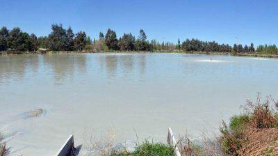 Cipolletti dejará de volcar sus efluentes cloacales crudos al río Negro