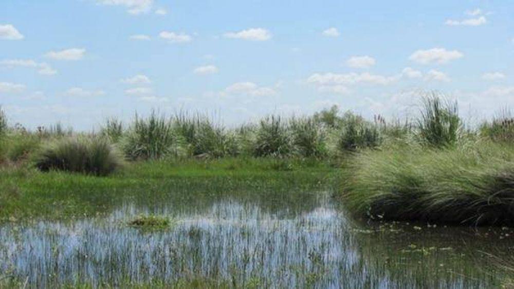 El Senado aprobó la creación de un nuevo parque nacional en la provincia de Buenos Aires