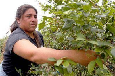 La UATRE y OSPRERA celebran el Día de la trabajadora rural