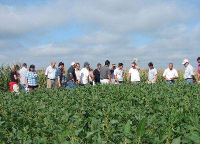 La Municipalidad convocó a ingenieros agrónomos