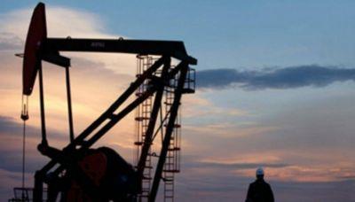 Tierra del Fuego adjudica bloque petrolero clave a YPF