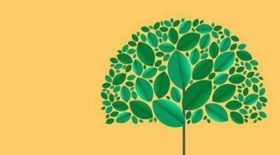 Avanzan los preparativos para la Jornada de RSE y Sustentabilidad en Campana