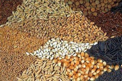 Logística agroindustrial de Uruguay