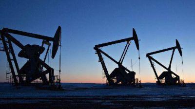 Petrolera Medanito perdió el 15% de su patrimonio y evalúa vender activos