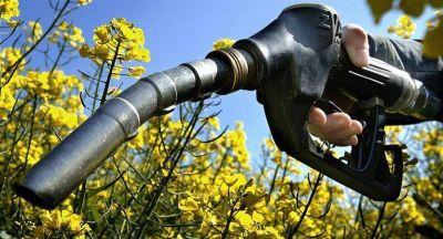 Energía subió precios de los biocombustibles: se evalúan nuevos aumentos en los surtidores