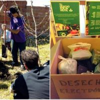 ¿Tenés tecnología para tirar? Entregala y ayudás a reforestar Mar del Plata con frutales