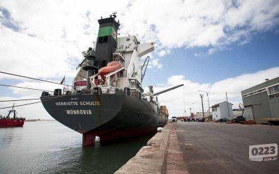 Proyectan que las exportaciones por el puerto de Mar del Plata crecerán un 15% este año