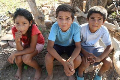 Tres hermanos se bañan y cocinan con el agua del canal en el que viven los chanchos