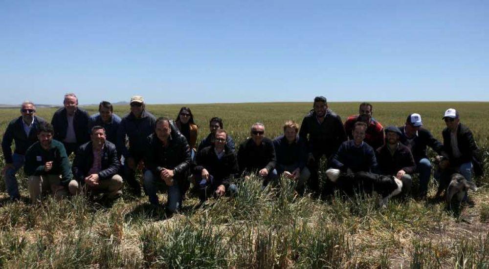 Empresarios de medianos y grandes molinos de Brasil visitaron Quequén y la zona
