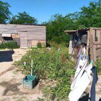 Déficit habitacional: vivir como se pueda, vivir donde se pueda