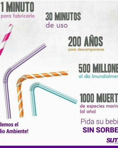 """Bonifatti: """"Ponemos a disposición del Intendente el proyecto sobre prohibición de sorbetes"""""""