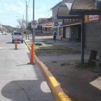 Se renovaron los refugios y paradas de colectivos en toda la ciudad