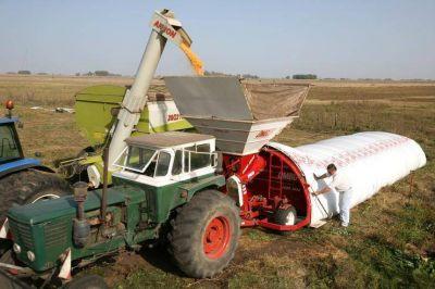 Vuelve una disputa entre productores y un gremio por los silobolsas y denuncian amenazas