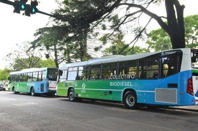 Presentaron los dos primeros colectivos que funcionarán con biodiesel