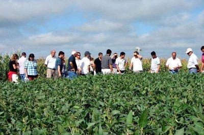 Los agrónomos se separan de los ingenieros y constituyen su propio Colegio a nivel provincial
