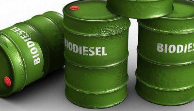 La industria de los Biocombustibles exige un tratamiento tributario diferencial
