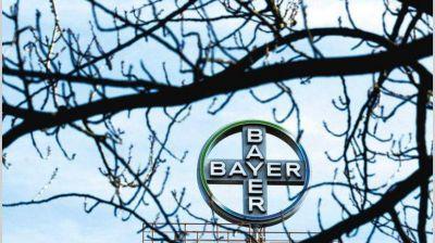 Bayer recibió un guiño de la Justicia en los juicios por el glifosato