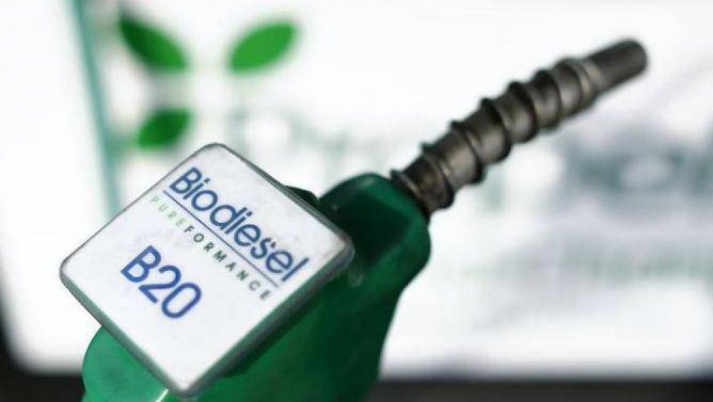La producción de biodiésel cayó un 15%