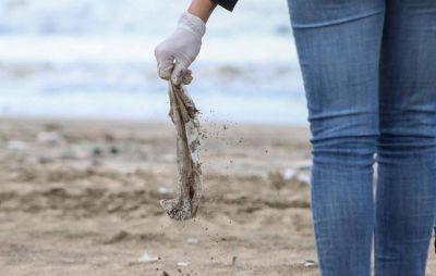 Un daño irreversible al medio ambiente: las consecuencias de los residuos plásticos en las playas bonaerenses
