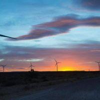 """Energía eólica: """"Chubut ya tiene 17 parques"""", algunos en ejecución"""