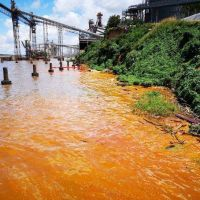 Empresas aceiteras derramaron 1.000 toneladas en el río Paraná