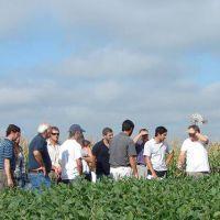 Los ingenieros agrónomos de Buenos Aires, a un paso de formalizar su Colegio