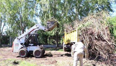 Vecinos de Junín denuncian pastizales y basurales en viviendas y terrenos baldíos