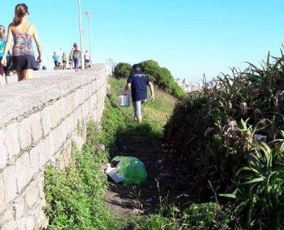 El Municipio avanza en la campaña de desratización de espacios públicos