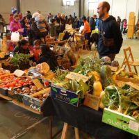 De la mano de Gestión Ambiental, se viene Eco Jornadas