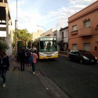 Por incumplimiento se ve resentido el servicio de transporte urbano