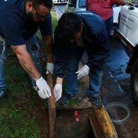 San Isidro intensifica operativos de desratización para prevenir el hantavirus