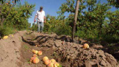Prestigiosa multinacional peruana arribó a Mendoza en busca de productos frutales