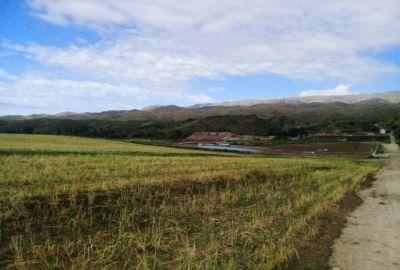 Medio Ambiente realizó una inspección en el feedlot Nicanor y constató el cese de actividades