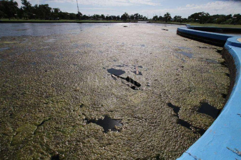 El agua del lago de Parque Sur: una descomposición