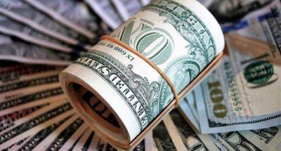 El dólar anotó la mayor suba del año y se acercó al piso de la