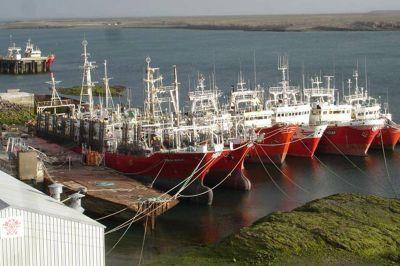 El SOMU acordó un 122,5% en paritarias de la pesca de calamar