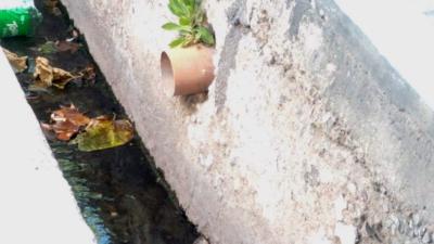 Cloacas 'truchas': preocupación por el vertido de agua contaminada a las acequias