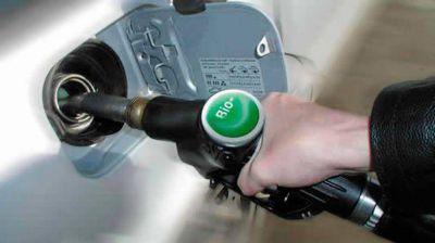 El Gobierno aumentó el precio del bioetanol y redujo el valor del biodiesel