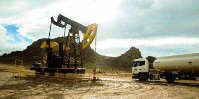 Chubut licita la operación transitoria del área hidrocarburífera Cerro Negro