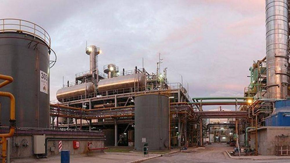 Futuro incierto para la Industria del biocombustible: Temen que las Petroleras lo produzcan
